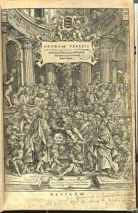 Andreas Vesalius Human Anatomy Book