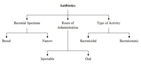 A common scheme of classifications for antibiotics