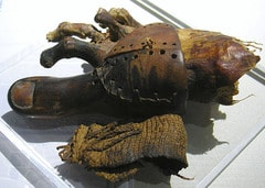 Cropped version of image of a prosthetic toe from ancient Egypt, now in the Egyptian Museum in Cairo