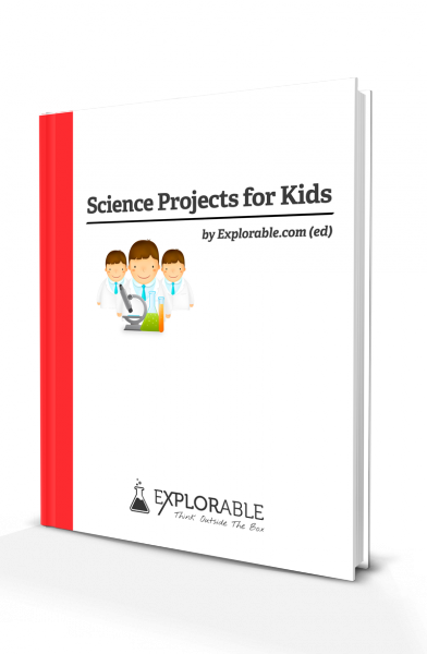 Kids Science Projects Ideas For School Project Experiments
