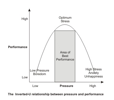 Relationship between stress and performance