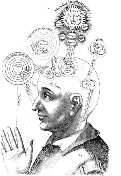 Intelligence Testing: Criticisms