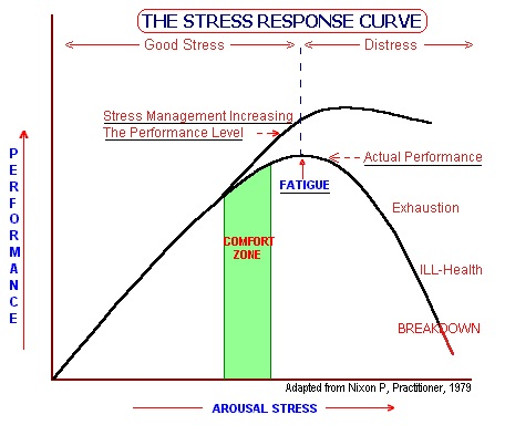 Image result for the stress curve